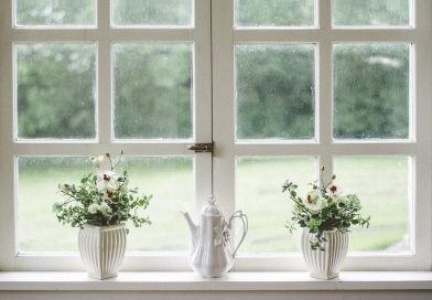 Fenster – die Lichtquelle Nummer eins